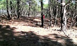 Wife fucked in the woods